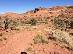 moab-trail-half-marathon-mile-8