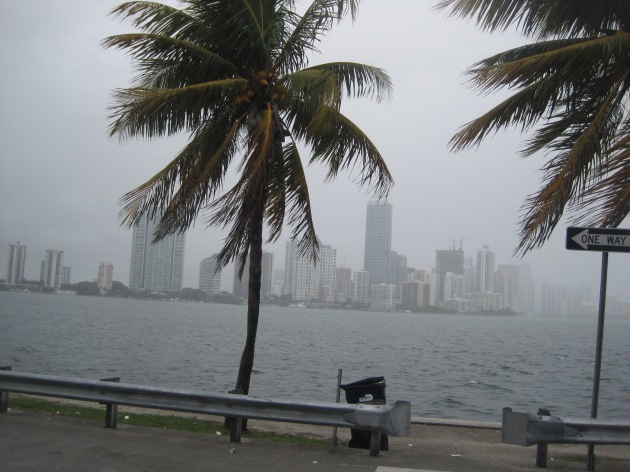10. Clouds and rain made a much-welcomed appearance as we tackled the needlepoint out-and-back on the Rickenbacker Causeway.  I rarely race in rain, but this brief shower certainly helped me out on this section, which most runners describe as the worst part of the race.