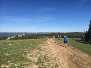 Mile 3 - Delightful, flat terrain