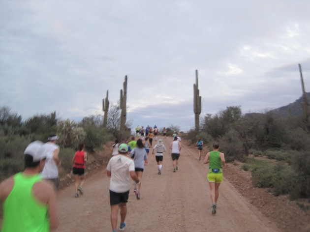 Mile 2 - The cactus gates beckon